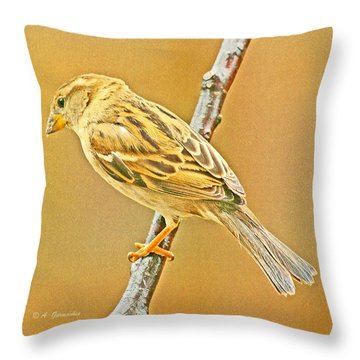Throw Pillow featuring the photograph House Sparrow by A Gurmankin
