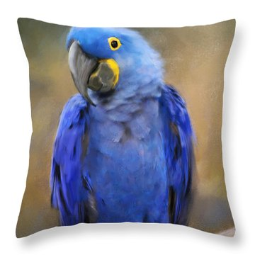 Hyacinth Macaw  Throw Pillow by Jai Johnson