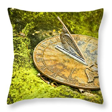 I Count None But Sunny Hours Throw Pillow by Carolyn Marshall