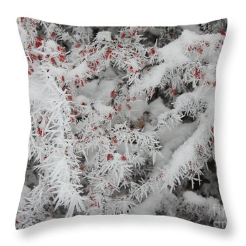 I Love Winter Throw Pillow by Carol Groenen
