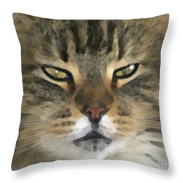 I Miss Him Sometimes ... Throw Pillow by Gwyn Newcombe