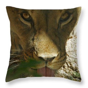 I See You 2 Throw Pillow by Ernie Echols