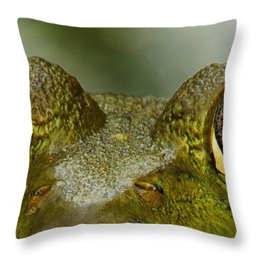 I See You Throw Pillow by Michael Peychich