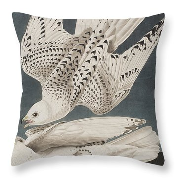 Iceland Falcon Or Jer Falcon Throw Pillow by John James Audubon