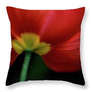 Iceland On Black Throw Pillow by Kathy Yates