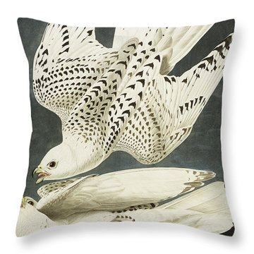 Iceland Or Jer Falcon Throw Pillow by John James Audubon