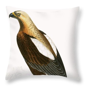 Imperial Eagle Throw Pillow by English School