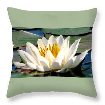 In Bliss Throw Pillow by Angela Davies
