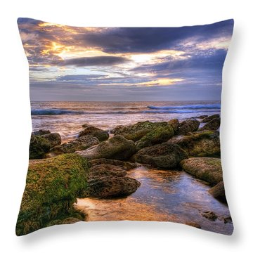 In The Morning Throw Pillow by Svetlana Sewell