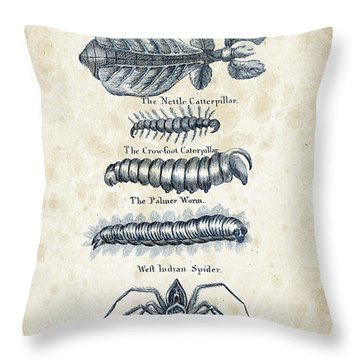 Insects - 1792 - 17 Throw Pillow by Aged Pixel