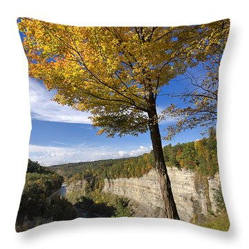 Inspiration Point Throw Pillow by Louise Heusinkveld