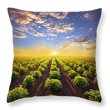 Into The Future Throw Pillow by Phil Koch