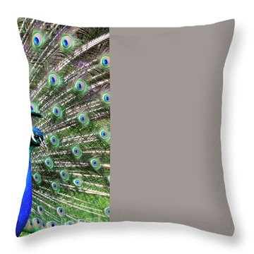 Iridescent Eyes Throw Pillow by Tim Gainey