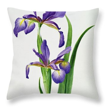 Iris Monspur Throw Pillow by Anonymous