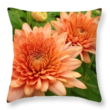 It Is Spring Throw Pillow by Kathy Bucari