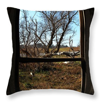It's All A Matter Of Perspective Throw Pillow by Amanda Barcon