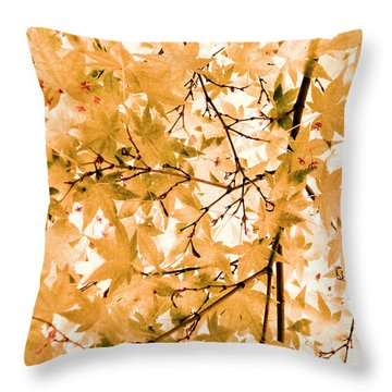 Throw Pillow featuring the photograph Japanese Maple Tree Acer Palmatum by Frank Tschakert