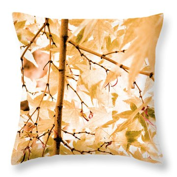 Throw Pillow featuring the photograph Japanese Maple Tree Leaves by Frank Tschakert