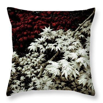 Throw Pillow featuring the photograph Japanese Maples by Frank Tschakert