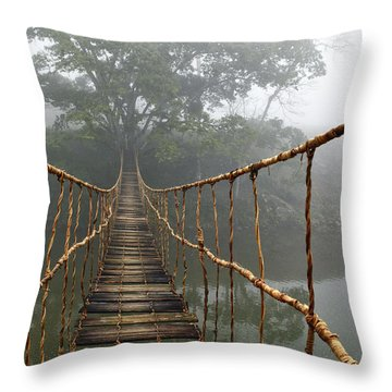 Jungle Journey 2 Throw Pillow by Skip Nall