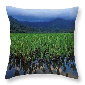 Kauai Taro Field Throw Pillow by Kathy Yates