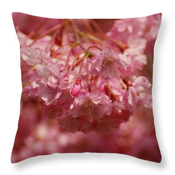 Keeps Me Hanging On Throw Pillow by Angie Tirado