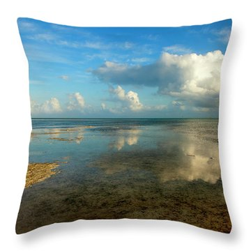 Keys Reflections Throw Pillow by Mike  Dawson