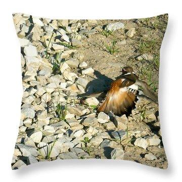 Killdeer Broken Wing Act Throw Pillow by Douglas Barnett