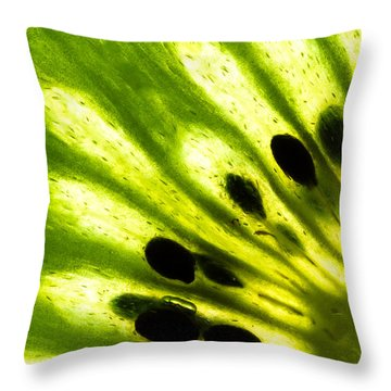 Kiwi Throw Pillow by Gert Lavsen