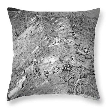 Korean War: Bloody Ridge Throw Pillow by Granger