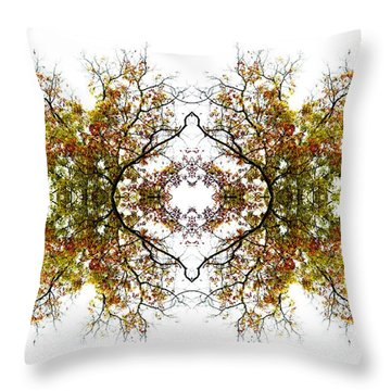 Lace Throw Pillow by Debra and Dave Vanderlaan