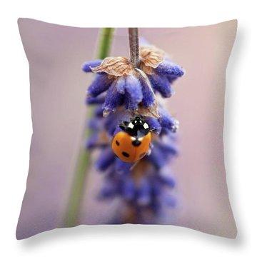 Ladybird On Norfolk Lavender  #norfolk Throw Pillow by John Edwards