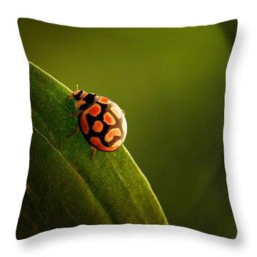Ladybug  On Green Leaf Throw Pillow by Johan Swanepoel