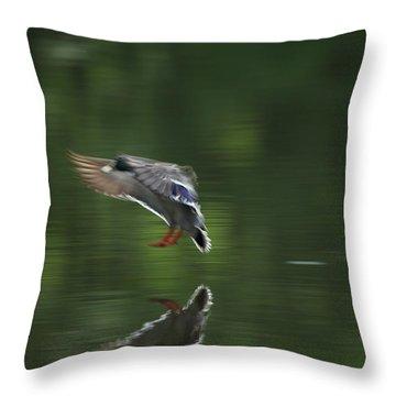Landing Throw Pillow by Karol Livote