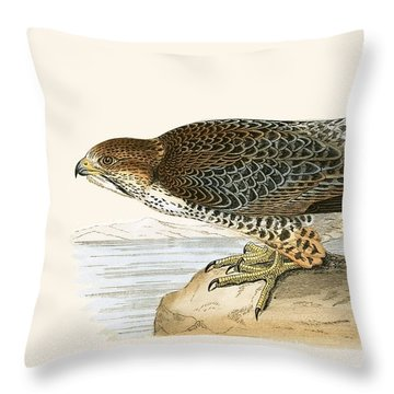 Lanner Falcon Throw Pillow by English School