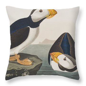 Large Billed Puffin Throw Pillow by John James Audubon