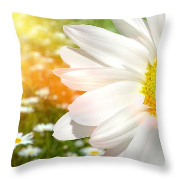 Large Daisy In A Sunlit Field Of Flowers Throw Pillow by Sandra Cunningham