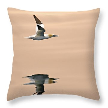 Late Arrival Throw Pillow by Tony Beck