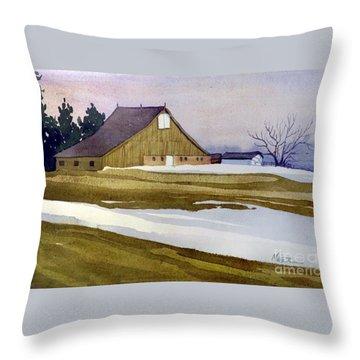 Late Winter Melt Throw Pillow by Donald Maier