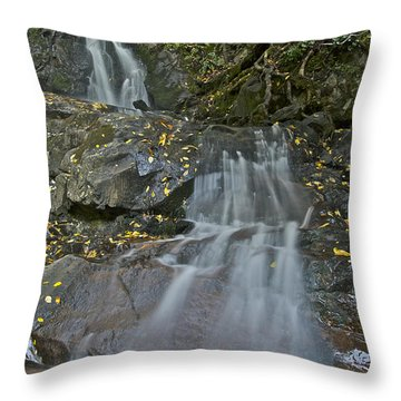 Laurel Falls Throw Pillow by Michael Peychich