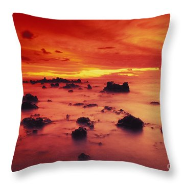 Lava Rock Beach Throw Pillow by Dave Fleetham - Printscapes