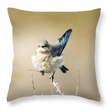 Left Wing Test Throw Pillow by Mike Dawson