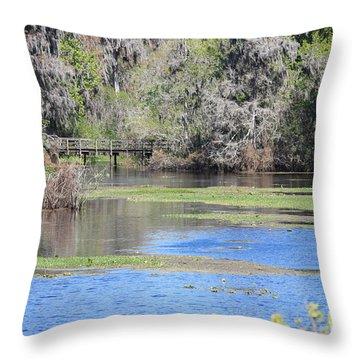 Lettuce Lake With Bridge Throw Pillow by Carol Groenen