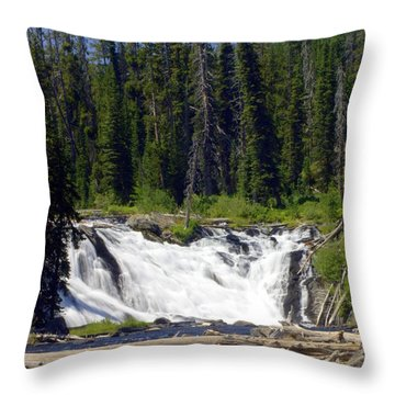 Lewis Falls Throw Pillow by Marty Koch