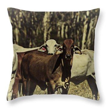 Life On The Farm V3 Throw Pillow by Douglas Barnard