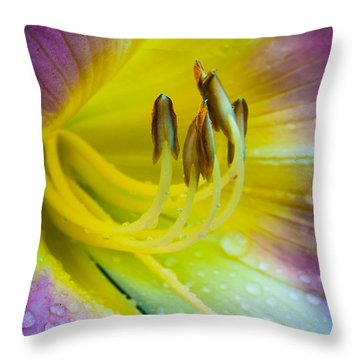 Lily Universe Throw Pillow by Inge Johnsson