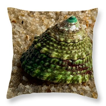 Little Green Turret Throw Pillow by Christopher Holmes