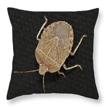 Little Stinker Throw Pillow by DigiArt Diaries by Vicky B Fuller
