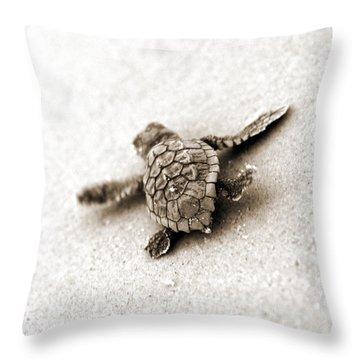 Loggerhead Throw Pillow by Michael Stothard