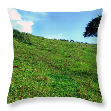 Lone Tree Hill  Throw Pillow by Thomas R Fletcher
